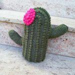 kaktus kissen gehäkelt häkeln